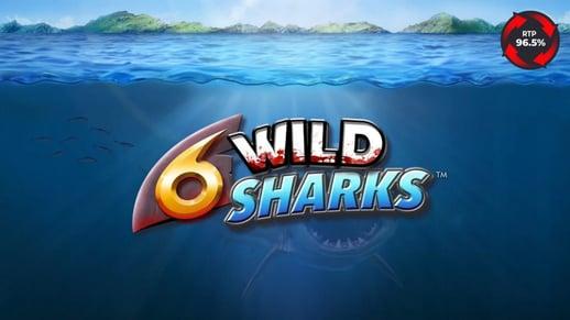 6-Wild-Sharks-logo-4ThePlayer-e1598526564959